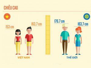 So sánh chiều cao Việt Nam với thế giới