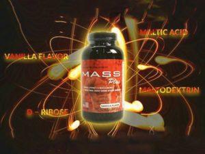 Thành phần của Mass Plus